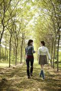 Two friends walking along a path through an avenue of trees. Stock Photos