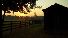 Horse Ranch Sunrise Stock Footage