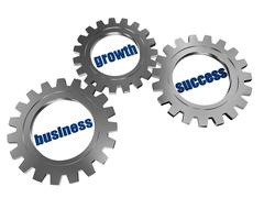Business, growth and success in silver grey gearwheels Stock Illustration