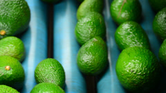 Avocados rolling in packaging line, close up Stock Footage