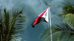 Sint Maarten Philipsburg 006 flag of the island between palm leaves Stock Footage
