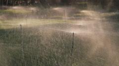 Agriculture sprinkler irrigation Stock Footage