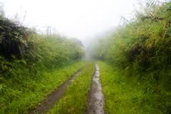 dirt road in rain - stock photo