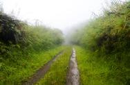 Stock Photo of dirt road in rain