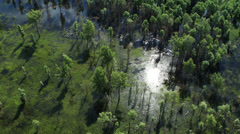 Stock Video Footage of Aerial View. Flight over Swamps. Barnaul suburb