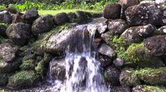 Waterfall taro, poi Stock Footage