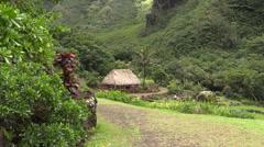 Hawaiian village site Stock Footage