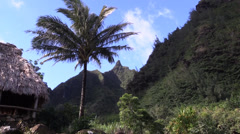 Napali Coast ,Northern Kauai - stock footage
