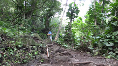 Napali Coast trail ,Northern Kauai - stock footage