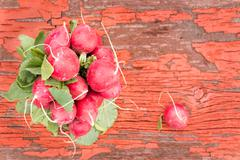 Bunch of fresh ripe crisp red radishes Stock Photos