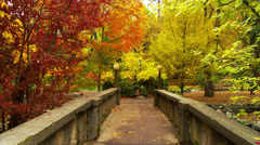 Bridge in Autumn, Zoom In - stock footage