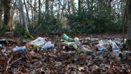 Stock Video Footage of Rubbish scattered in a nature reserve - dolly