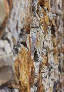 Vertical photo of a fragment of old stone wall Stock Photos