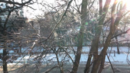 Stock Video Footage of Trees under the road in winter morning sunrise