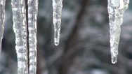 Stock Video Footage of Drops fall from icicles spring heat cold