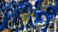 Stock Video Footage of horse racing cups awards