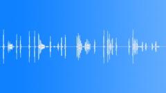 Dog barking - outdoor - village 1 - sound effect