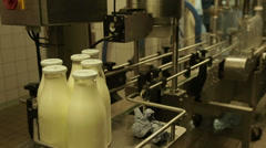 Freshly filled bottles with milk on the conveyor belt Stock Footage