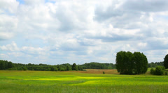 The rural landscape with clouds in summer, timelapse Stock Footage