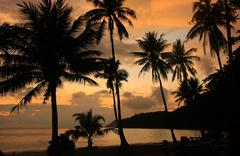 Tropical beach with palm trees at sunrise, ang thong national marine park, th Stock Photos