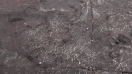 Stock Video Footage of Geology - Sedimentary structures - Ichnofacies / Trace Fossils