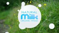 Stock Video Footage of Organic whole milk. Milk drops animated.