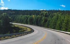 Road Curving Through Forrest - stock photo