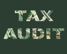 Dreaded Tax Audit - stock illustration