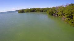 Florida Keys nature scene Stock Footage