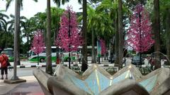 Malaysia Kuala Lumpur 032HD exotic pink trees and a fountain Stock Footage