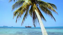 Tropical Paradise at Samui with palm  tree on the beach and ship Stock Footage