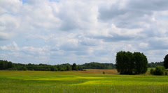 The rural landscape in summer on a cloudy day Stock Footage