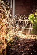 Stock Photo of Garden path with gate