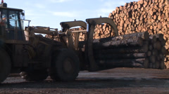 LUMBER MILL LOGGING TIMBER AND TREES WITH HEAVY EQUIPMENT TRUCKS HD Stock Footage