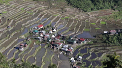 Rice Terraces, Philippine. Stock Footage
