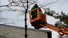 Trimming the trees in a cherry picker Stock Footage