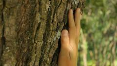The hand touching the tree, love for nature, close-up Stock Footage