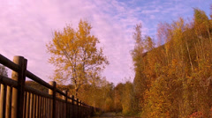 Autumn, Old railway in Maredsous. Stock Footage