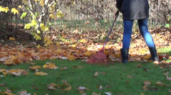 Gardener rake in pile dry leaves seasonal autumn garden work Stock Footage