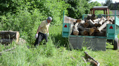 Farmer man load trailer with dry logs for winter firewood - stock footage