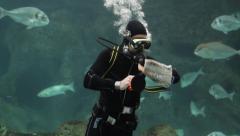 Diver cleaning fish tank aquarium scuba Stock Footage