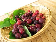 Juneberries in basket Stock Photos