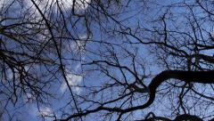 Turning beneath bare tree branches against winter sky Stock Footage