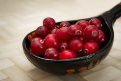 Ripe cranberries Stock Photos