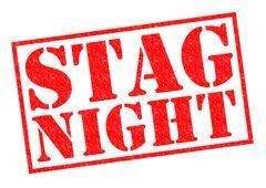 Stag Night Stock Illustration