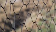 Stock Video Footage of Wire fence. Blurry background.