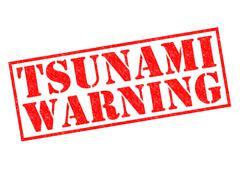 Tsunami Warning Stock Illustration