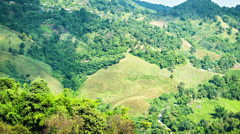 Mountains in northern thailand with tea plantations Stock Footage