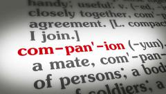 Dictionary Companion - stock footage