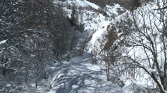 Allos Village Still of Surrounding Forest Stock Footage